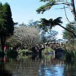 5 Things to See on a Walk around Stow Lake