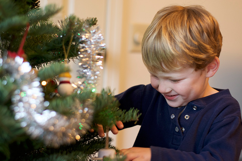 Choosing-Our-First-Real-Christmas-Tree