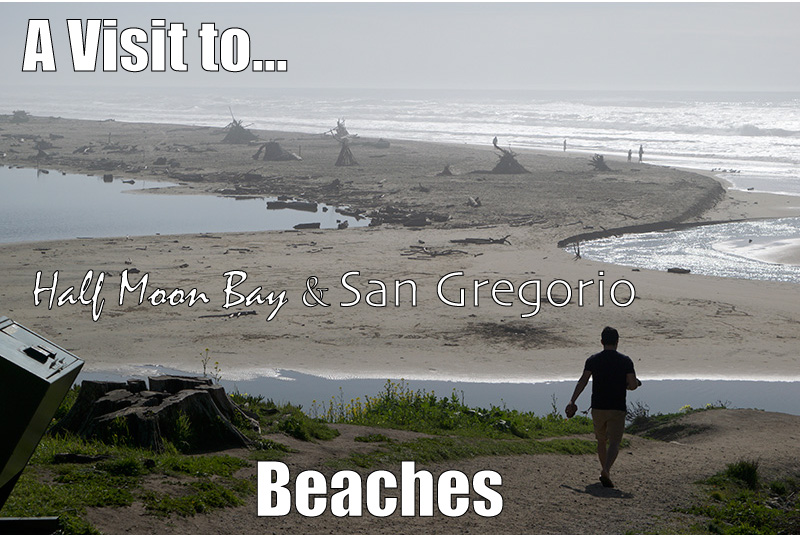 A Trip to Half Moon Bay and San Gregorio Beaches