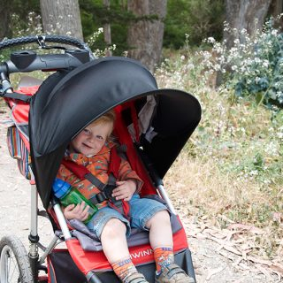 Review: Schwinn Arrow Running Stroller