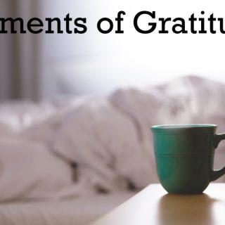 My Moments of Gratitude #22