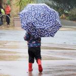 50 Rainy Day Activities Free Printable